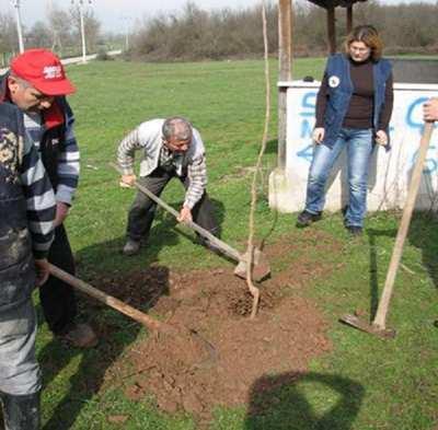 Orman Genel Müdürlüğü'nden örnek proje
