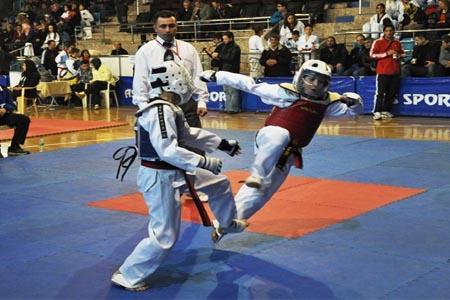 Minik Taekwondocular madalya ile döndü
