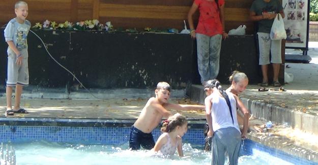 Tehlikeyi hiçe sayıp süs havuzuna girdiler
