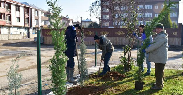 Karasu'da ağaçlandırma çalışmaları