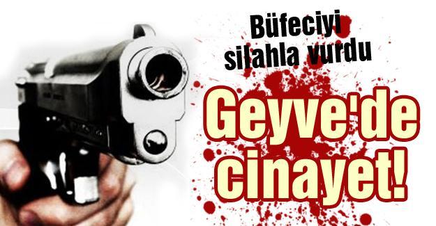 Geyve'de cinayet