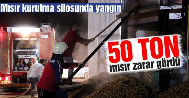 50 ton mısır zarar gördü