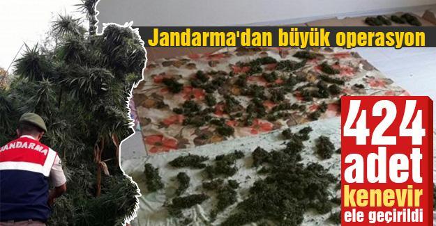 Jandarma'dan büyük operasyon