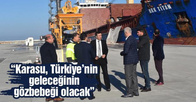Bakan Yardımcısı Çelik Karasu'daki yatırımları inceledi