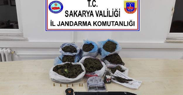 Jandarma'dan Korucuk'ta uyuşturucu operasyonu