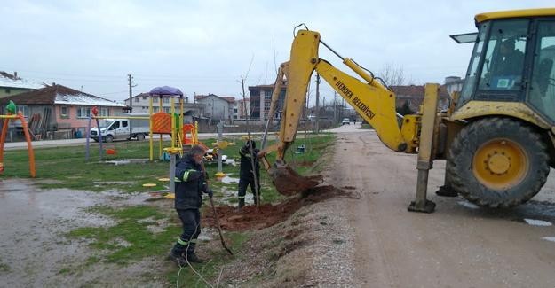 Hendek'te ağaçlandırma çalışması