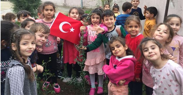 Okul bahçeleri zeytin fidanıyla şenlendi