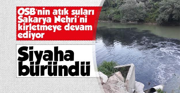 Sakarya Nehri kirlenmeye devam ediyor