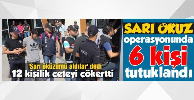 Sarı Öküz operasyonunda 6 tutuklama