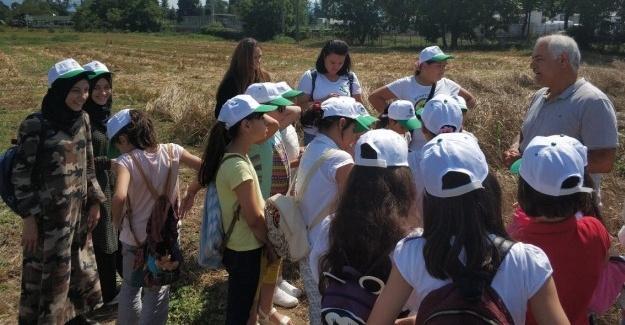 Sürdürülebilir tarımda bilinçli gelecek