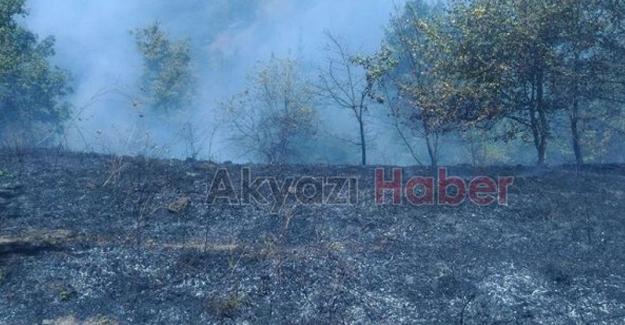 Çay için yaktıkları ateş az daha ormanı yakacaktı