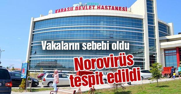 Norovirüs tespit edildi
