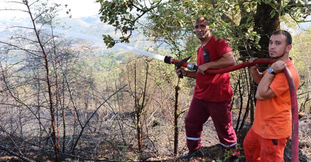 Serdivan'da çalılık yangını