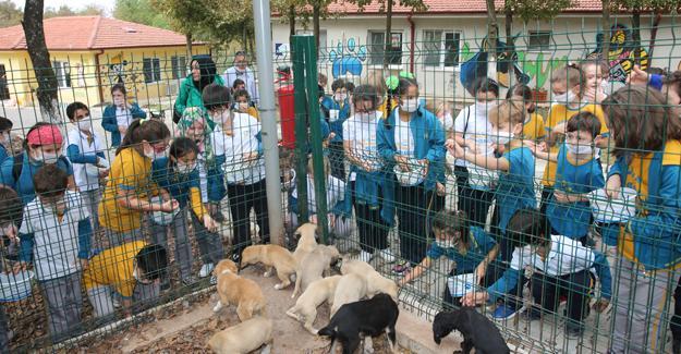 Dünya Hayvanları Koruma Günü'nde çocuklardan anlamlı ziyaret