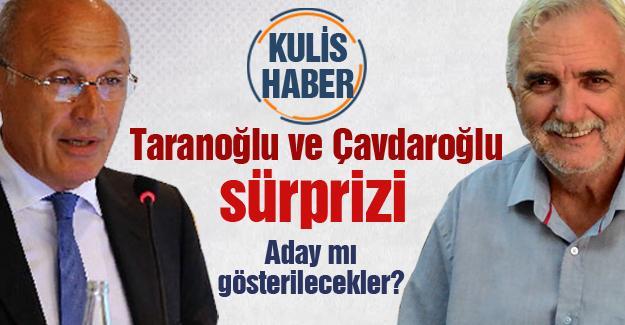 Taranoğlu ve Çavdaroğlu sürprizi! Aday mı gösterilecekler?