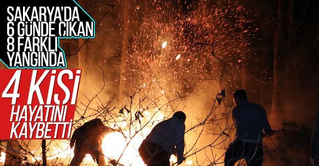 Sakarya'da 6 günde 8 farklı yangın!
