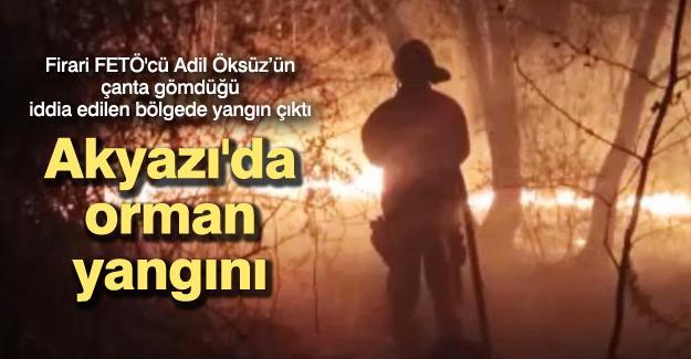 Firari FETÖ'cü Adil Öksüz'ün çanta gömdüğü iddia edilen bölgede yangın çıktı