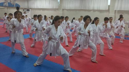 Hendek HEM'de karate kursları sürüyor