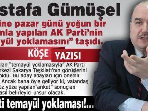 AK PARTİ TEMAYÜL YOKLAMASI!.