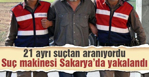 Suç makinesi Sakarya'da yakalandı