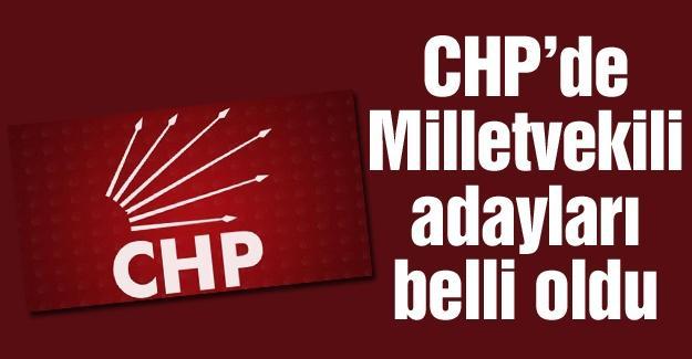 CHP Sakarya Milletvekili adayları belli oldu