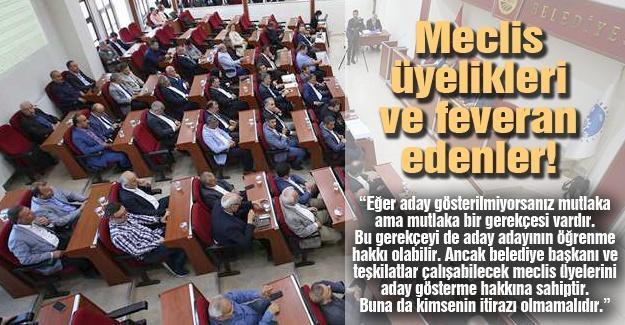 Meclis üyelikleri ve feveran edenler!