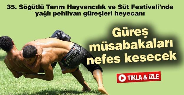 35. Söğütlü Tarım Hayvancılık ve Süt Festivali'nde yağlı pehlivan güreşleri heyecanı