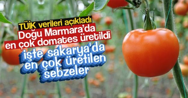 İşte Sakarya'da en çok üretilen sebzeler