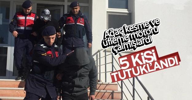 Hırsızlık yapan 5 kişi tutuklandı