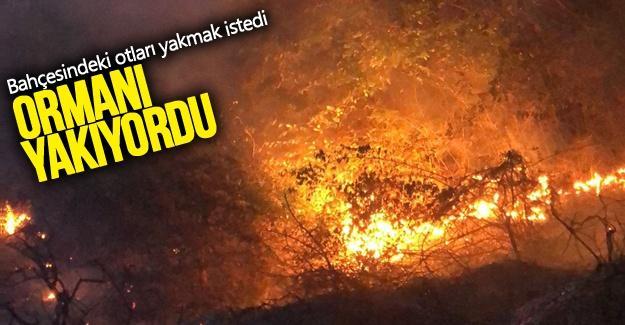 Ot yakmak isterken ormanı yakıyordu