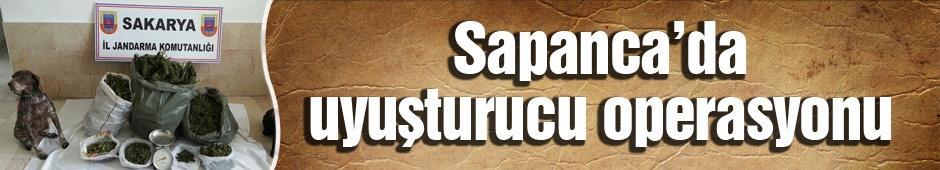 Sapanca'da uyuşturucu operasyonu