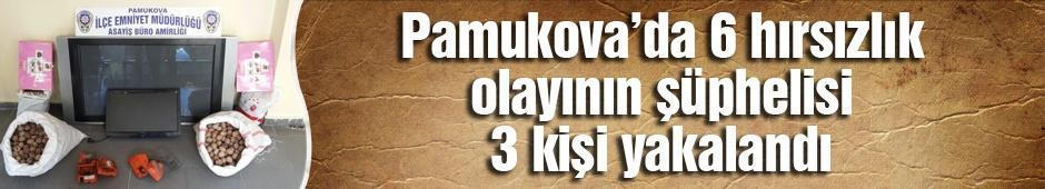 Pamukova'da 6 hırsızlık olayının şüphelisi 3 kişi yakalandı