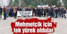 Zeytin Dalı Harekatına destek için yürüdüler