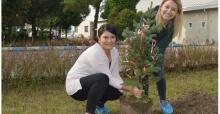SEDAŞ'tan ağaçlandırma projesi