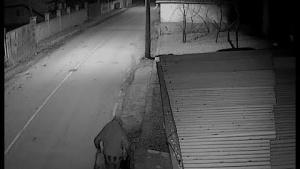 Kına gecesinde marketi pompalı tüfekli hırsızlarca soyuldu